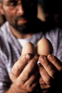 Boer met biologische eieren