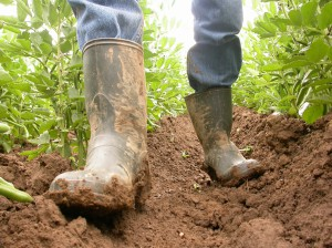 Laarzen en grond
